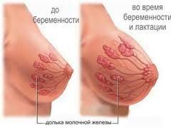 krasa_zdorovia-hrudy-01