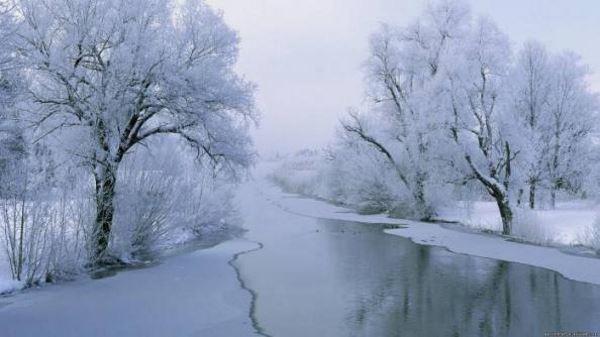 30-12-14-foto-600x337-1